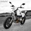 Auspuffanlage SGS2-2M BMW Motorrad R 2-V  R 100 R - GS